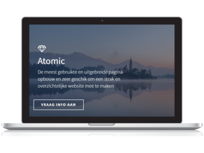 Laptop met voorbeeld van webpage
